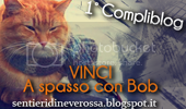 photo banner_giveaway_bob_zpsd87c47a8.png