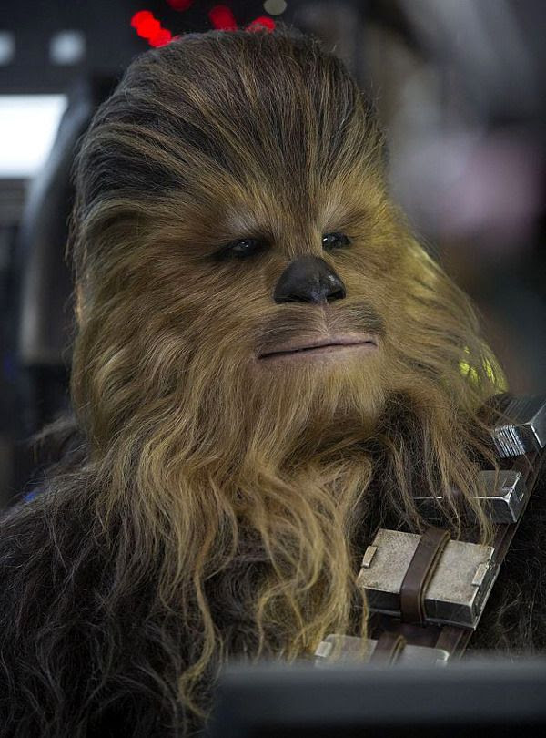 Chewbacca (Peter Mayhew) is ready for action in STAR WARS: THE FORCE AWAKENS.