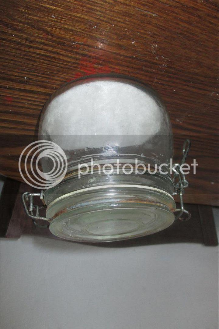 photo IMG_1033Medium_zpsa421b196.jpg