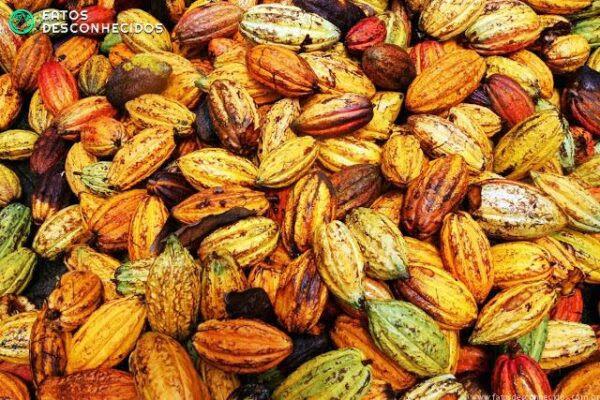 Alimentos que estão sumindo do planeta