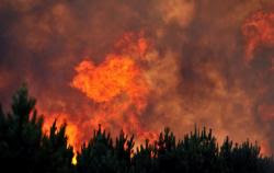 canicule2012-incendies.jpg