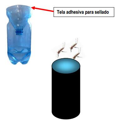 Trampa para Zancudos   Municipalidad de Talcahuano