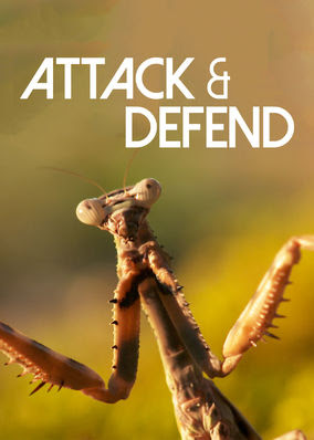 Attack and Defend - Season 1