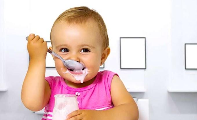 Wie bevorzugen Sie Bio-Milch Joghurt für Babys! | Beklentiler.com