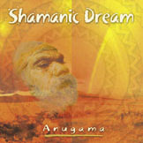 Anugama Shamanic Dream