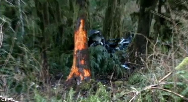 The wreckage of the crash, seen here, was barely visible from the road, aside from the tree, which was clearly impacted
