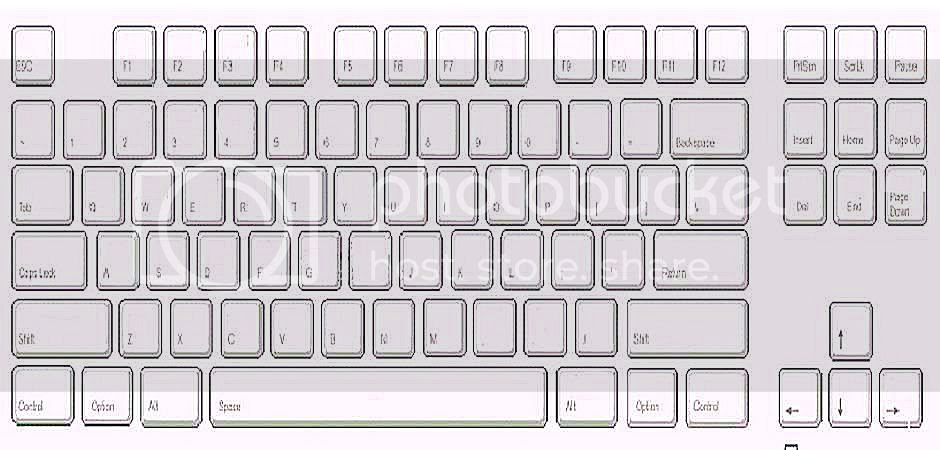 Blank Keyboard Printout | White Gold