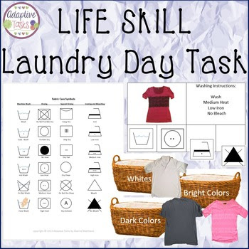 Laundry Day- Washing Care Instruction and Sorting Task
