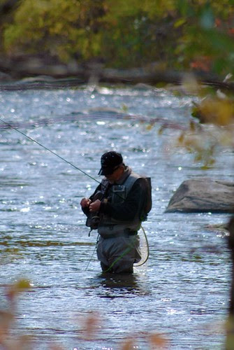 Connecticut Fly-Fisherman