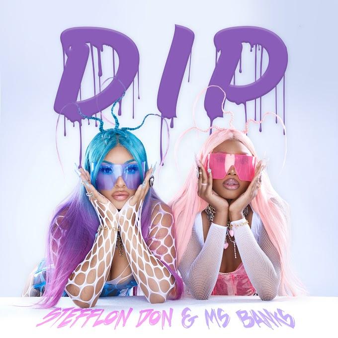 Stefflon Don & Ms Banks - Dip (Clean / Explicit) - Single [iTunes Plus AAC M4A]