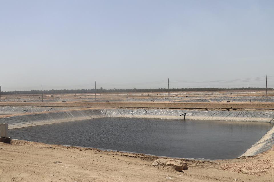 9- أحواض السمك بالمزرعة