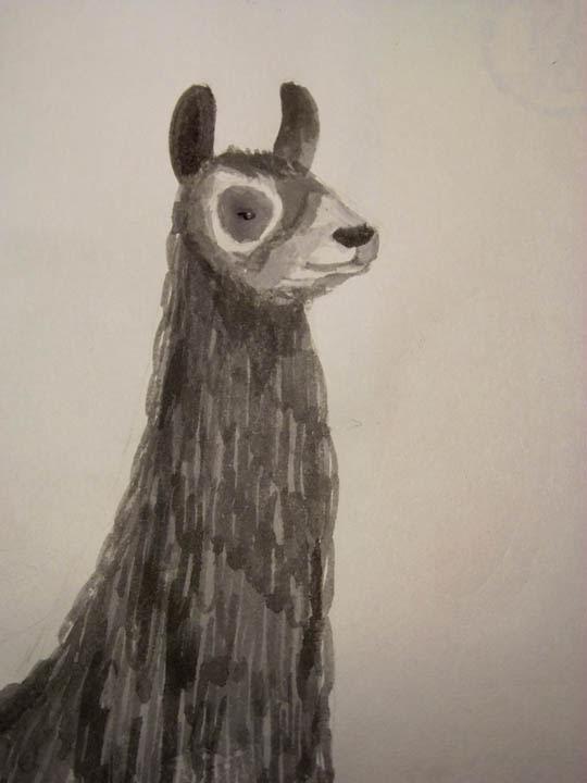 llama finished