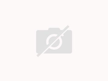 Fleisch : Pfannengyros mit Knobisauce