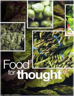 7. Smarter Brain e1317207735808 10 Interesting Facts about Vegetarian Day   [FACTS]