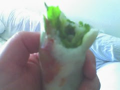 spring roll happiness!
