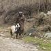 shepherd with goat