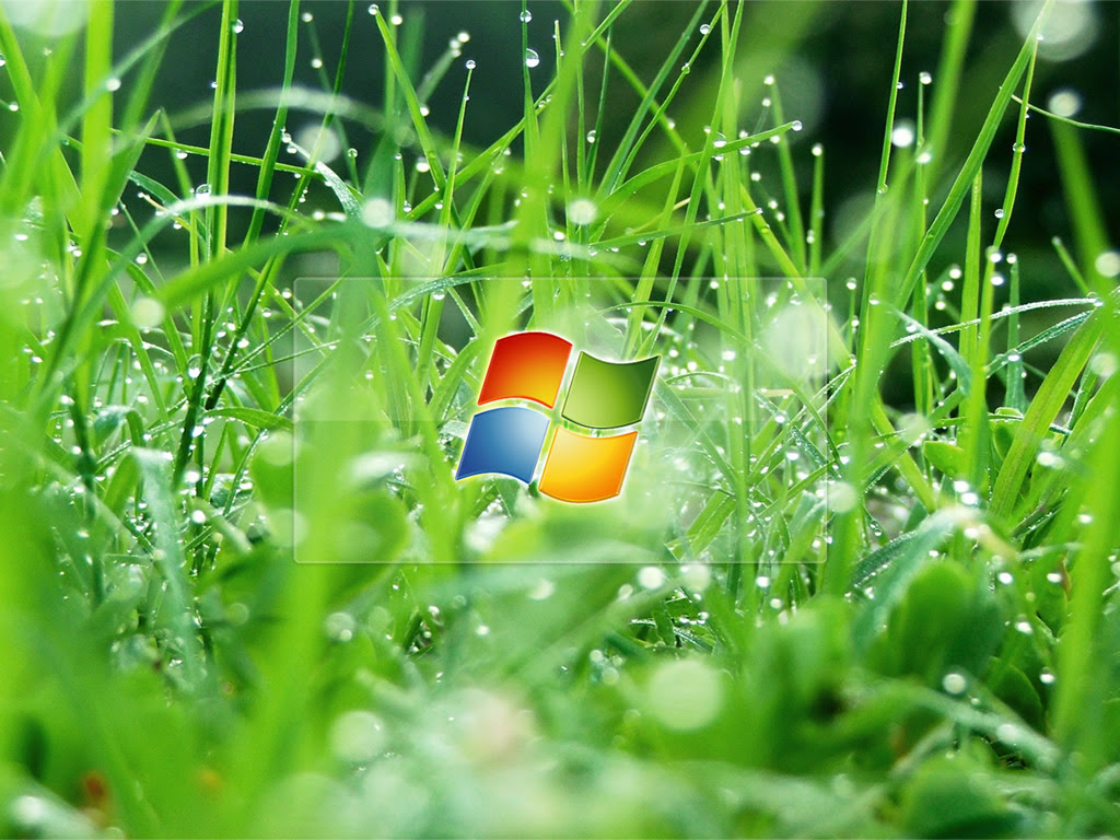 Pc Wallpapers Ovaisitooxtgemcom