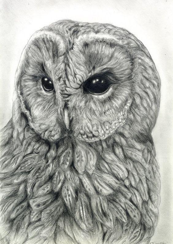 graphite art 29
