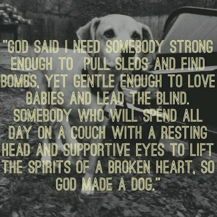 Dogs Unconditional Love Quotes. QuotesGram