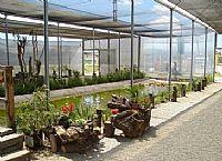 Orquidário do Parque Leon Feffer