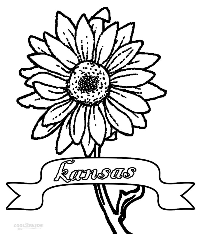 Sunflower Free Pattern Download Hobbycraft Blog Coloring Pages
