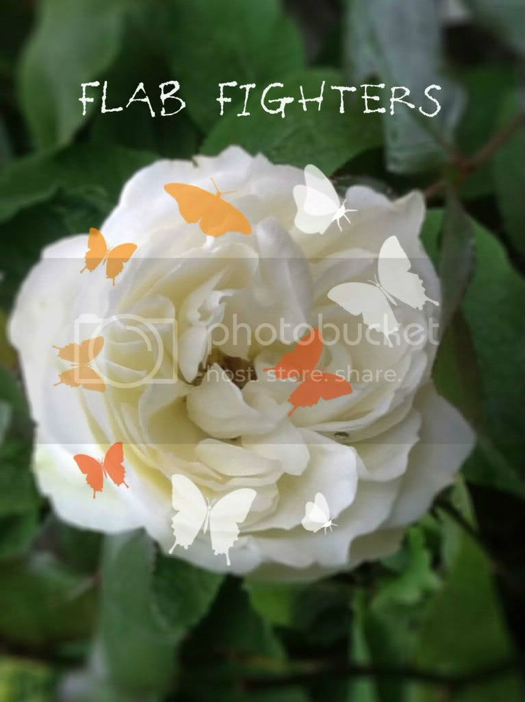flabfighters