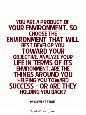 Success Quote You Are A Product Of Your Environment So Choose