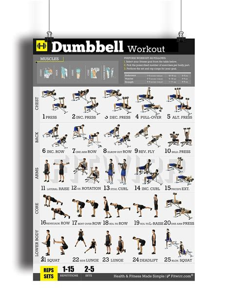 dumbbell exercises workout poster  laminated home