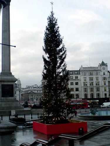 The Christmas Twig