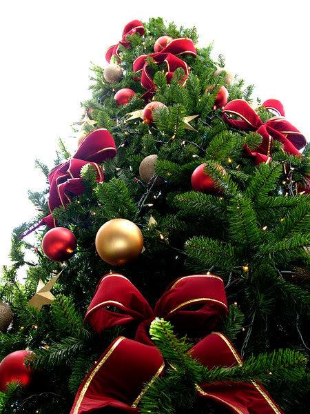 Qual é a Origem do Natal?