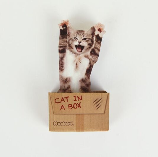 Cat in a Box Sticky Notes Temptation Gifts