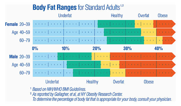 body fat percentage calculator large frame