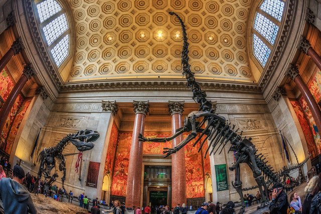 Dinosaurs in the American Museum of Natural History