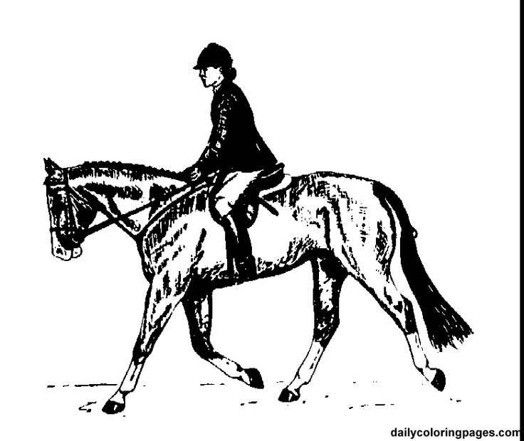 english rider horse coloring pages   Eloise   Pinterest