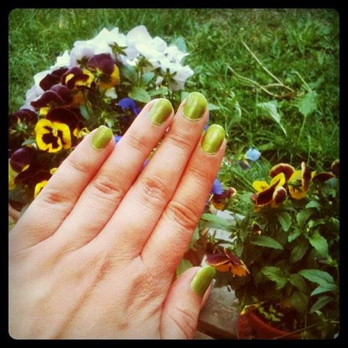 magic green fingers