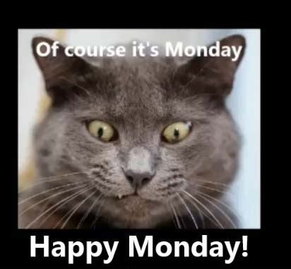 Cheer Up Monday Blues. Free Monday Blues eCards, Greeting