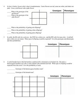 Monohybrid Cross Practice Problems Worksheet Answers ...