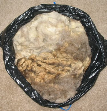Bag of adult and lamb Merino fleece.