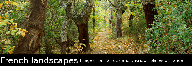 French Landscapes - Nature and landscape photography from France