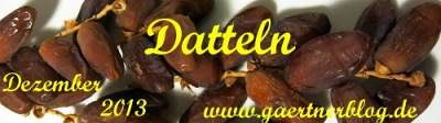 Garten-Koch-Event Dezember 2013: Datteln [31.12.2013]