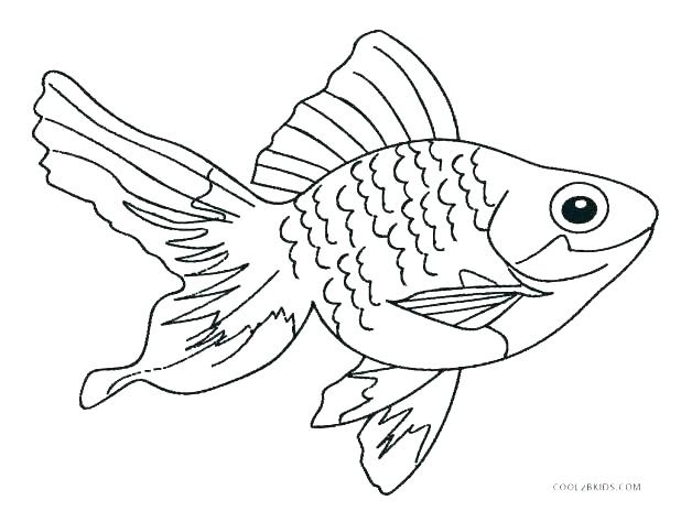 Realistic Fish Coloring Pages at GetColorings.com   Free ...
