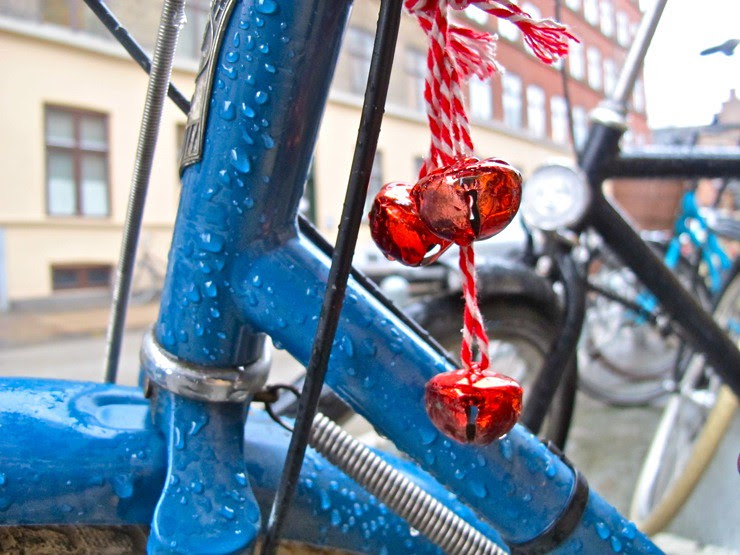 Wet bike berries