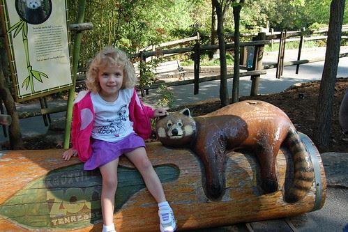 zoo_redpanda2