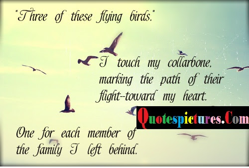 Birds Quotes One For Each Member Of The Family I Left Behind