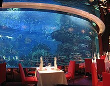 The World's Only 7 Stars Hotel is Burj Al Arab Hotel Dubai al mahara restaaurant