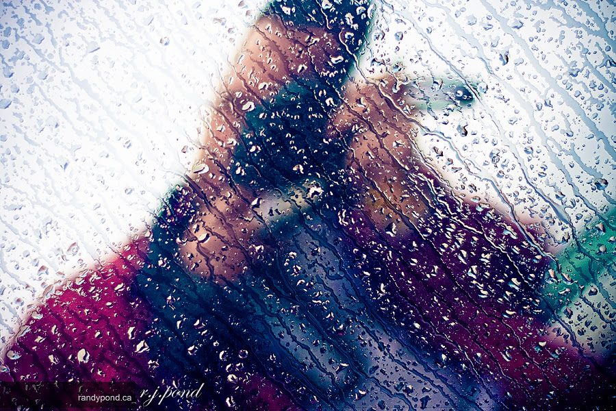 ~ 118/365 April Showers ~