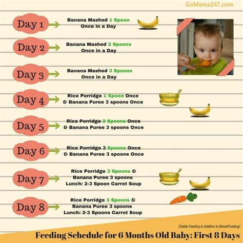food chart   months  baby gomama
