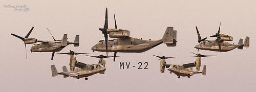 "MV22 Osprey by Scott Stringham ""Rustling Leaf Design"""
