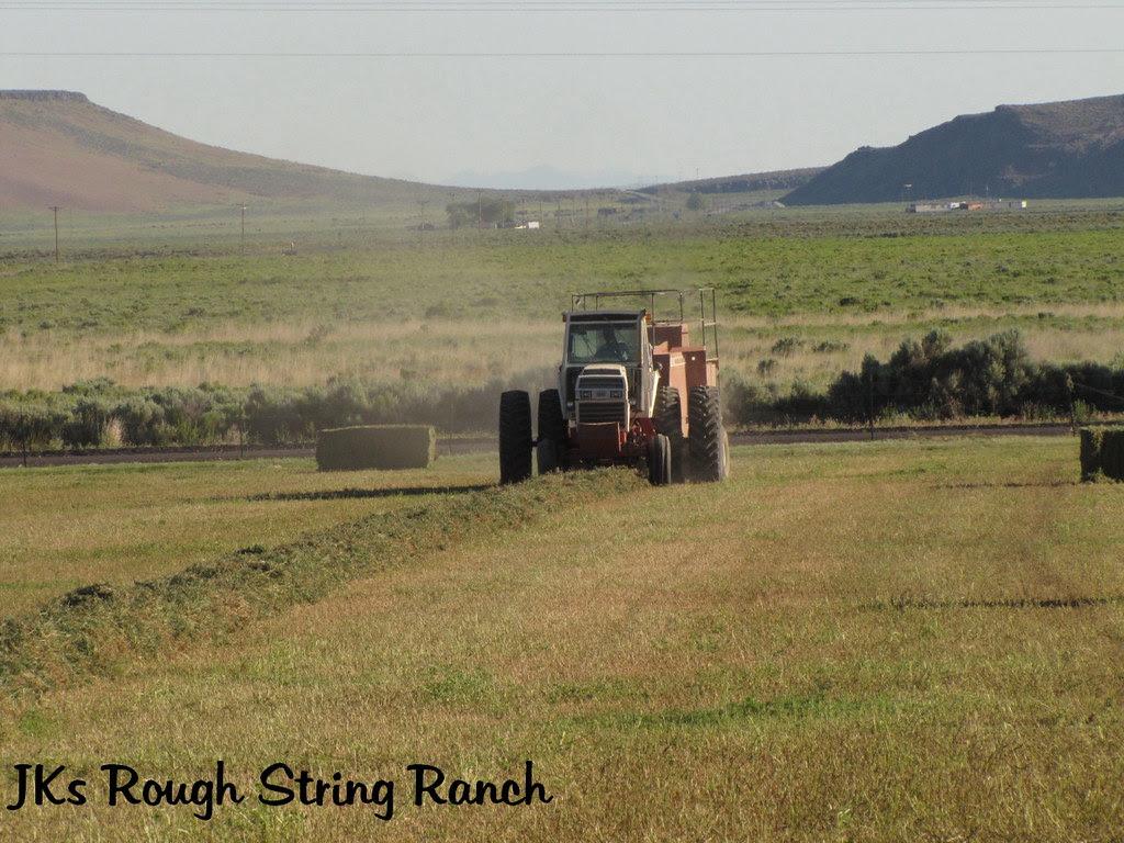 Hay Man Rudy~1st Cutting 2010