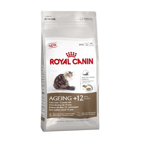 buy royal canin ageing cat food  kg
